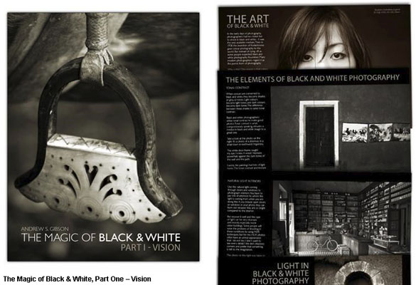 magic-of-black-and-white-andrew-gibson